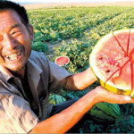 Water Purification vs Watermelon in China