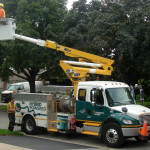 Street Light bulb Change in Toronto, Canada