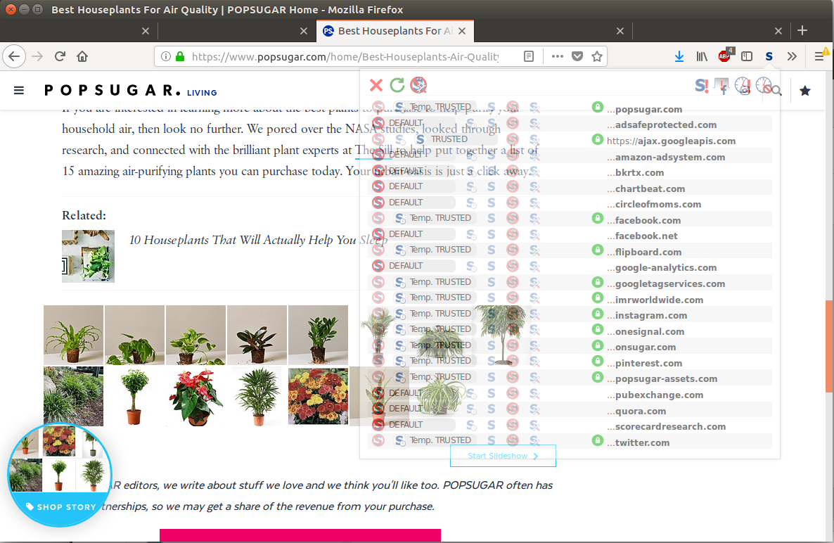 The NoScript plugin allows me to degrade sites such as PopSugar down to what I wish to connect, and not what they wish for me to connect. Look at all those sites that I did not ask for?