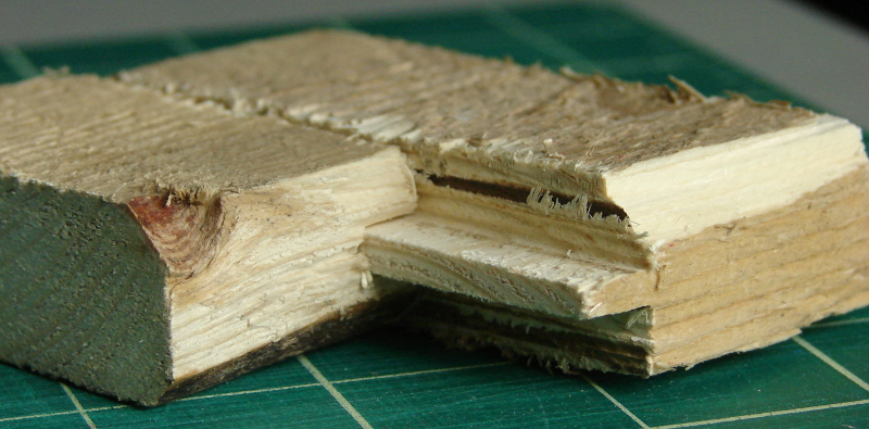 First tongue and groove joint in wood, a long time coming, and a series of steps. Photo 4 by Don Tai